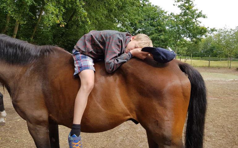 Pferdegestütztes Training für Kinder und Jugendliche Juli 2020