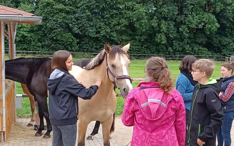 Pferdegestütztes Training 2021